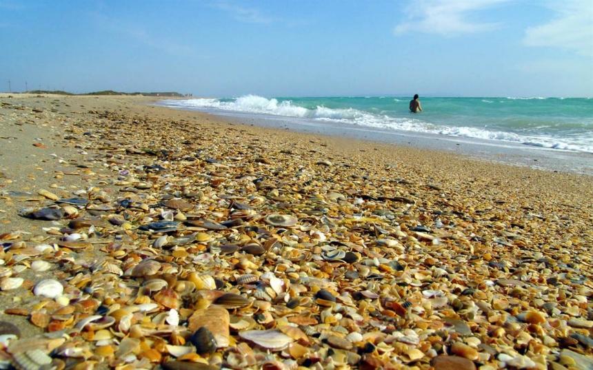 Пляжи Краснодарского края в будущем 2018-ом обустроят поединым стандартам